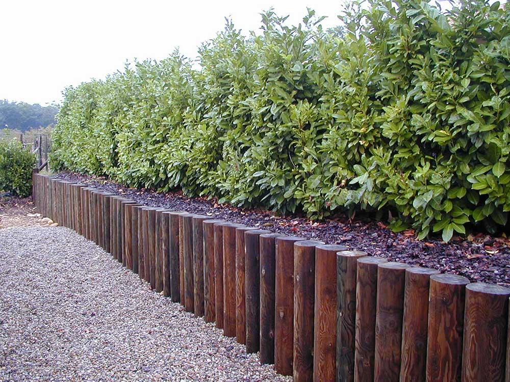 piquets en bois pour l 39 agriculture piquets de vigne ou. Black Bedroom Furniture Sets. Home Design Ideas
